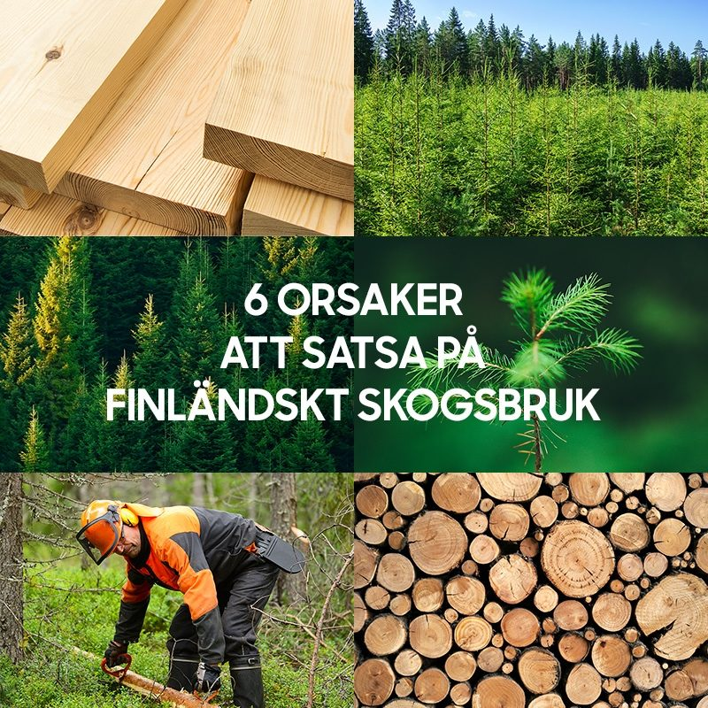 SLC - Slc Skogskampanjen Bild Till Startsidan