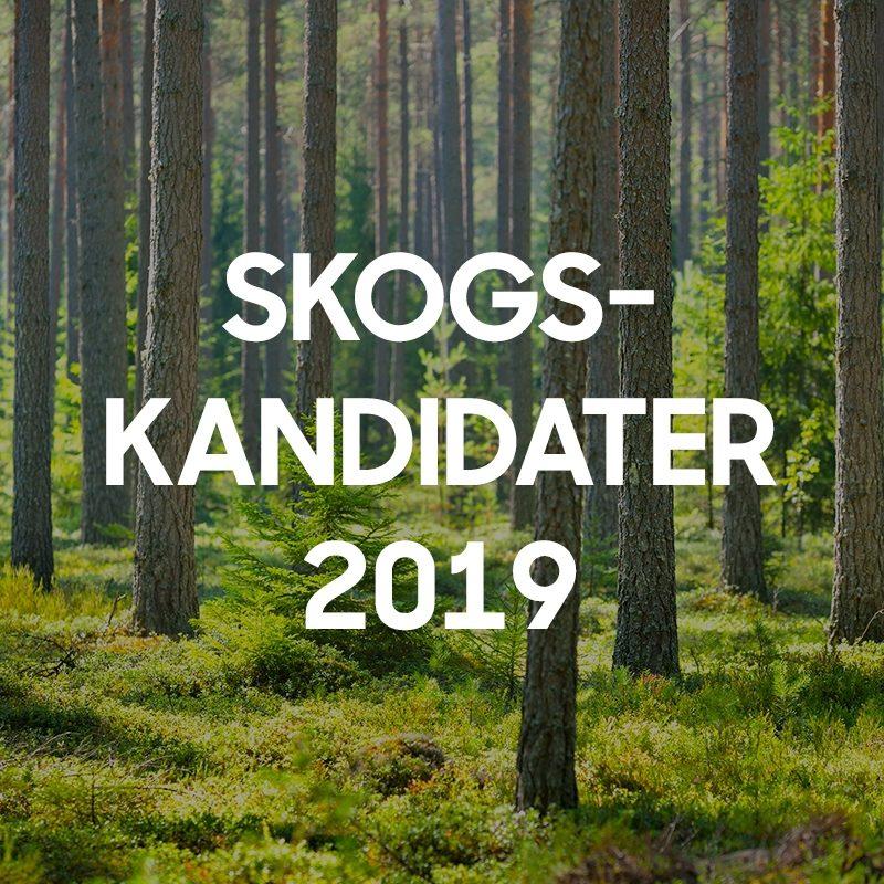 SLC - Slc Skogskampanjen Kandidatgalleriet Bild 2