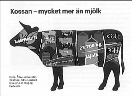 SLC - Kossan Mycket Mer An Mjolk Husdjur 32019