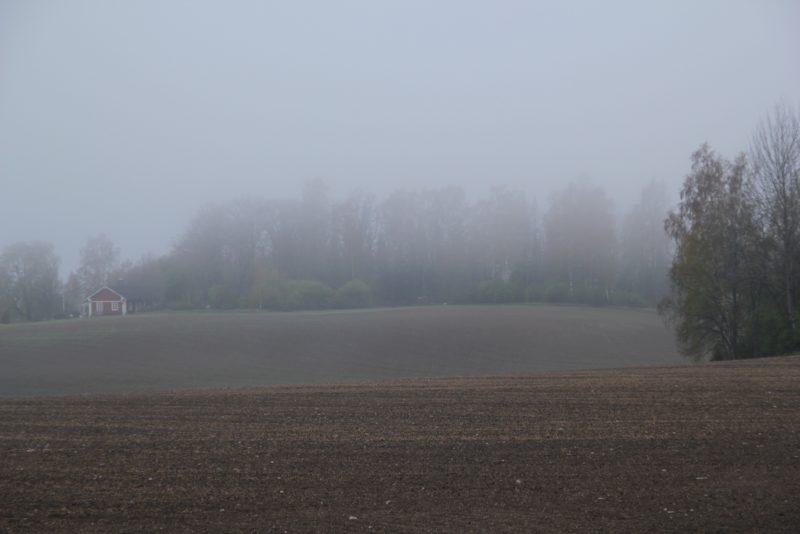 SLC - Landskap Brodd Vastnyland Mw Liten
