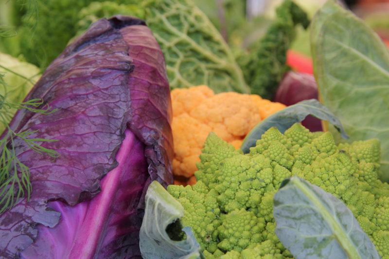 SLC - grönsaker 1